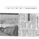 神戸新聞(三田版)に掲載されました。