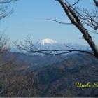 『奥出雲から見えた大山』の画像