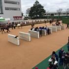 『産経賞オールカマー2021 予想見解』の画像
