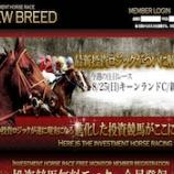 『【リアル口コミ評判】NEW BREED(ニューブリード)』の画像