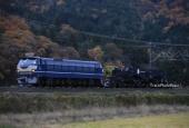 『2019/11/27運転 シキ800B2京都鉄博展示返却回送』の画像