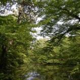 『赤玉杉池祭り』の画像