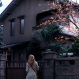 『地元に呪われた家が建てられ「沢山の犠牲者を出した」』の画像