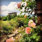 カフヱー花園