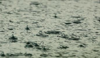 【雨の音】雨の日のあのワクワクする感覚、分かるやついる?【雨の景色】(動画あり)