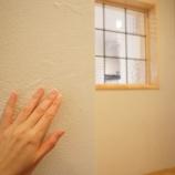 『ケイソウド壁のお手入れ』の画像