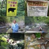 2021/7/30 八ヶ岳の渓流のサムネイル