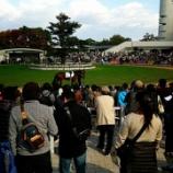 『【その他】京都競馬場に現地観戦に来ました vol.36』の画像
