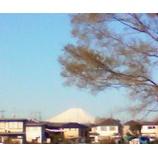 『強風なれど快晴』の画像