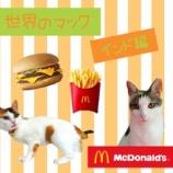 『【世界のマック】を食べてみよう!【インド編】』の画像