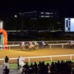 馬主目線の競馬予想