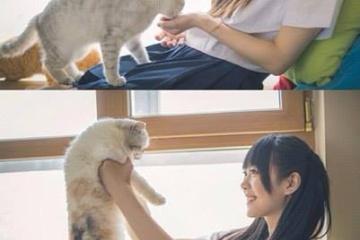 海外「最強のタッグだ」ネコと女子高生を写した写真にメロメロにされる海外の男子たち