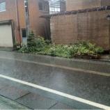 『(番外編)豪雨』の画像