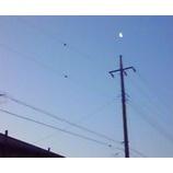 『月の雫』の画像