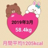 『13日で2キロ減量【2019年3月】毎日の摂取カロリー&体重・体脂肪率』の画像