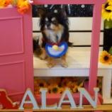『Dog Cafe ALANさんに行って来ました☆📝』の画像