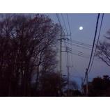『明けの月』の画像