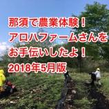『那須で農業体験!アロハファームさんをお手伝いしたよ!2018年5月版』の画像