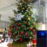 『(番外編)東京・新宿タカシマヤタイムズスクエアのクリスマスツリー』の画像