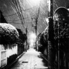 『雪が降りました。』の画像