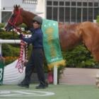 『葵ステークス2020 【最終予想】 ビアンフェが抜けた人気!それでも本命は中位人気のあの馬から!』の画像