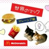 『【世界のマック】を食べてみよう!【マレーシア編】』の画像