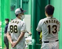 阪神の優勝へのカギは矢野監督の我慢力 中田良弘氏が指摘