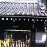 『(京)ご先祖様にご挨拶』の画像
