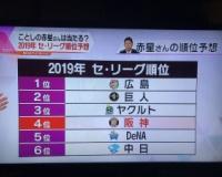 赤星のセ・リーグ順位予想www