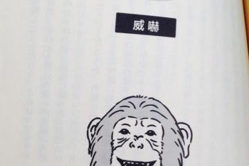 人間の子供とチンパンジーの赤ちゃんを一緒に育てた実験 →