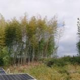 『太陽光発電所メンテナンス実施』の画像