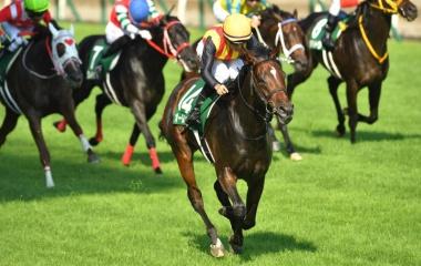 『【アイビスSD結果】3歳牝馬オールアットワンスが人気に応えて重賞初V』の画像