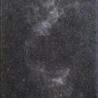 『北天の分子雲(2011/1/7)』の画像