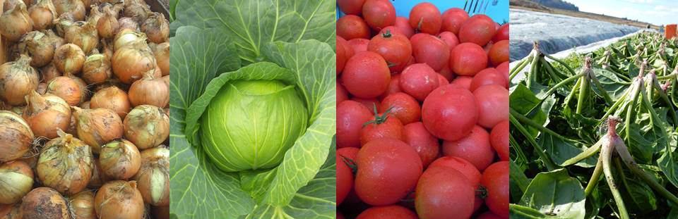 伊賀有機農産供給センター イメージ画像