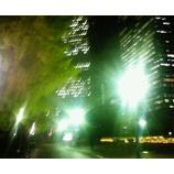 『高層ビルと銀杏の木』の画像
