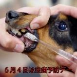 『6月4日は虫歯予防デー!シート1枚プレゼント♪』の画像