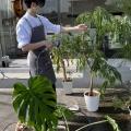 植物屋のお兄さん