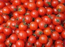 【急募】ミニトマトの美味しい食べ方