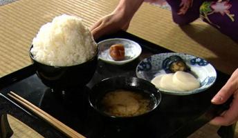 江戸時代のメシって食っても普通にうまいんかな