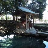『いつか行きたい日本の名所 泉神社』の画像