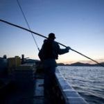 海釣り好きな人に聞きたいんだけども