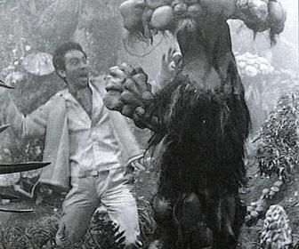 【長野】きのこ採りで行方不明 75歳男性の遺体見つかる 崖の下の岩場、リュックにはマツタケ 長野県のきのこ採り死亡は14人に