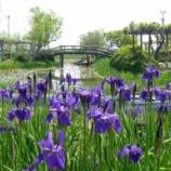 『いつか行きたい日本の名所 水郷佐原あやめパーク』の画像