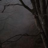 お前らが経験した怖い話きかせて『秋葉原の通り魔事件のときに』