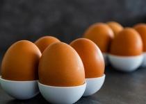 卵の意外な事実で打線組んだ