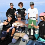 『8月22日 釣果 船中100匹以上と爆釣!! マダイは1匹 トラフグは5匹キャッチ!!』の画像
