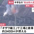 【悲報】ガキ「蜂の巣やんけ!ガス缶火炎放射器で焼いたろw」→3400平方メートルが焼ける
