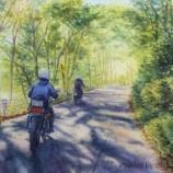 『森のトンネル』の画像