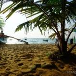 『ヒッカドゥワのビーチでまったり。ムカデやサソリにびっくり!』の画像