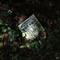 台風25号 町内の被害確認